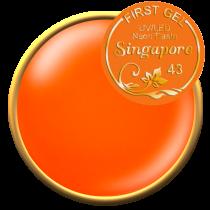 Singapore - 5 gr Neon gel paste
